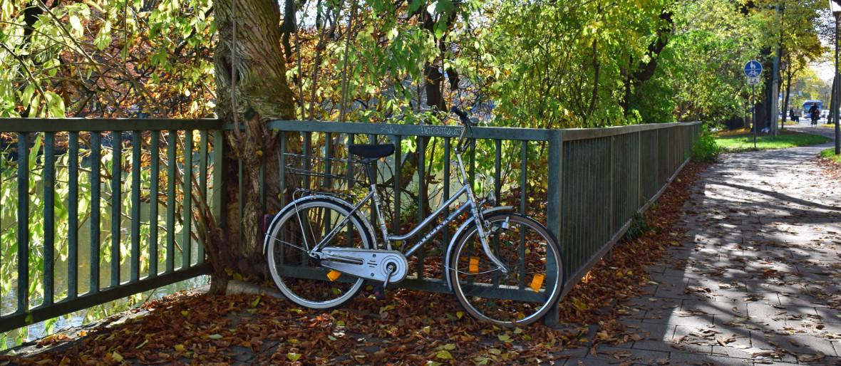 Fahrrad lehnt im Herbstlaub an der Isar, Foto: muenchen.de/Mark Read