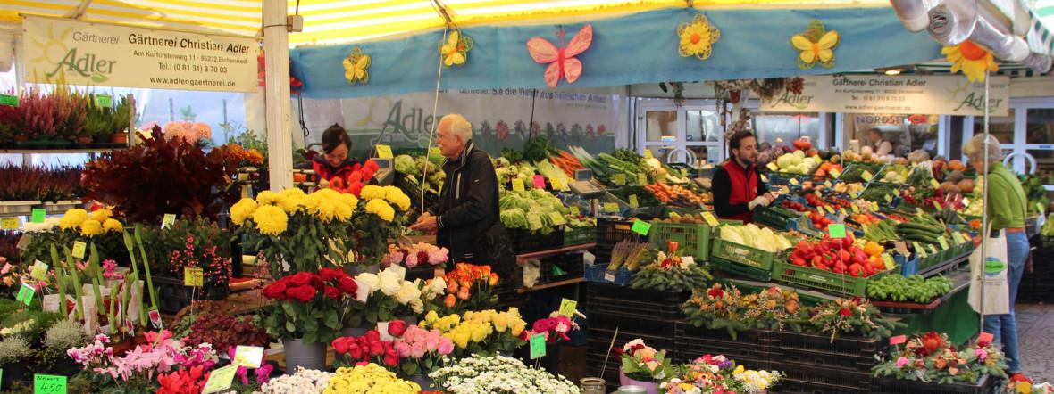 Blumenmeer im Pasinger Viktualienmarkt, Foto: Christian Brunner