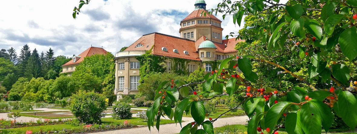 Der Botanische Garten in München., Foto: Leonie Liebich