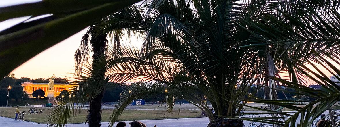 Sommer in der Stadt: Palmengarten auf der Theresienwiese, Foto: muenchen.de/Anette Göttlicher