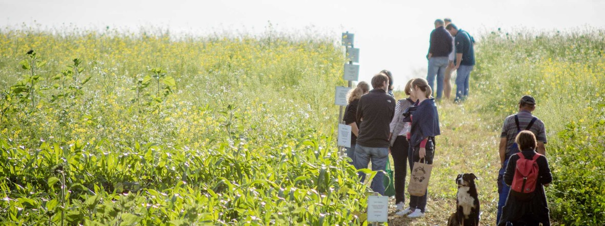 Menschen auf einem Feld, Foto: Elias Jakob/StMELF