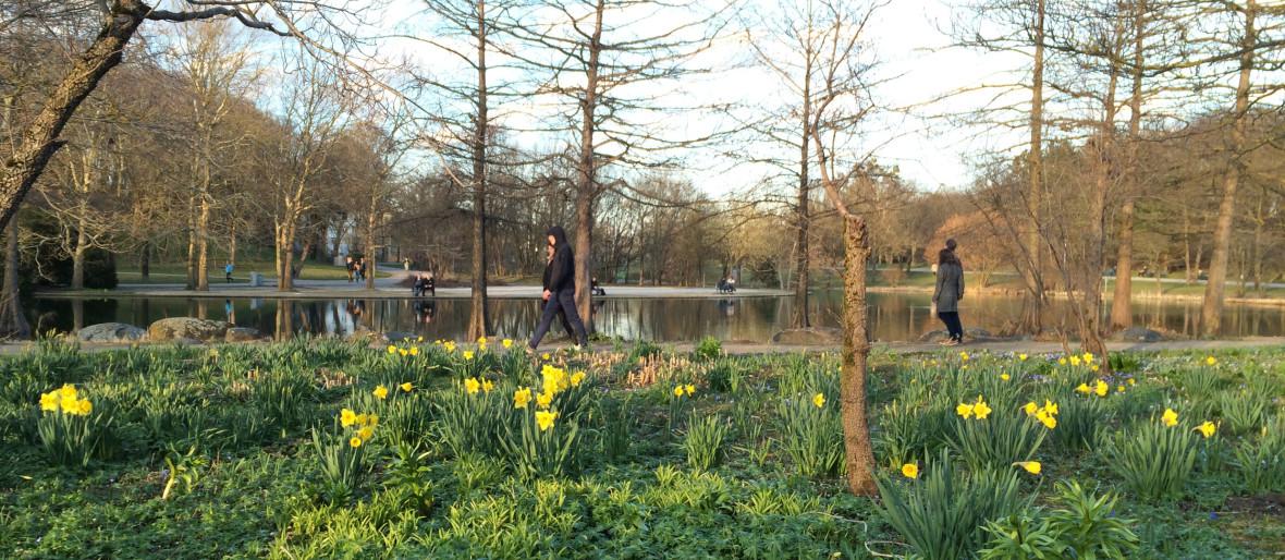 Frühlingszauber im Westpark, Foto: muenchen.de