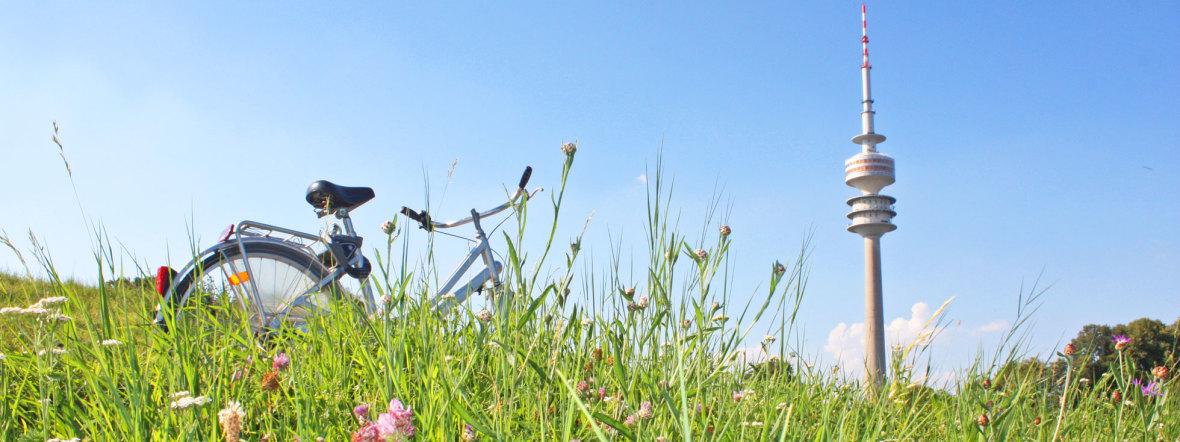 Sommer im Olympiapark, Foto: muenchen.de/Leonie Liebich