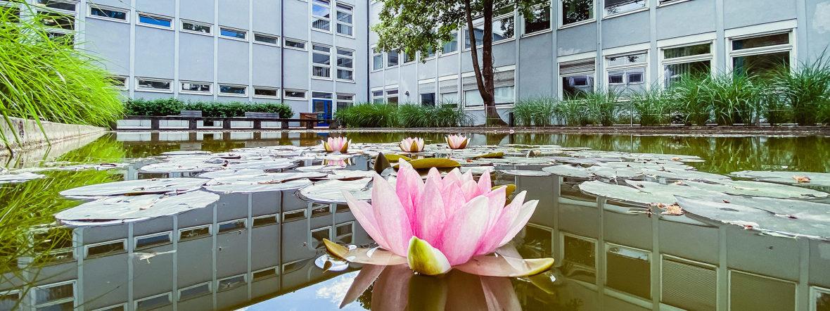 Kostenlos zum Realschulabschluss oder Abitur in München